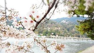 2014-04-20-17-24-32_deco